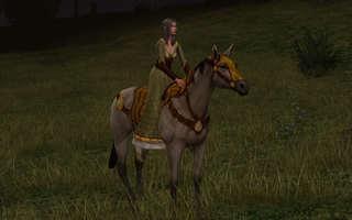 goldenhorse1.jpg